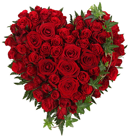 800069_hjerte-roede-roser-baare-begravelse-krans-roser-begravelse-blomsteroslo-blomster-levering-bestille-blomster-sorgbinderi-begravelsesbyraa-baarebukett.jpg;w;450;h