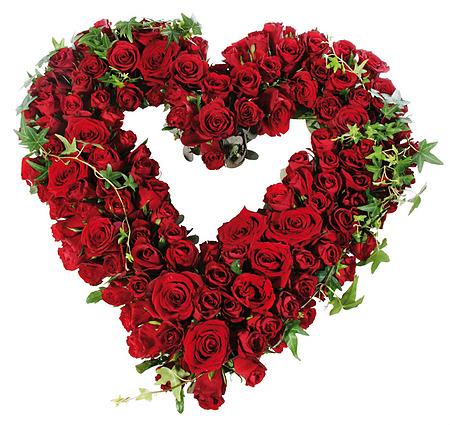 800071_hjerte-roedt-roser-roed-baare-begravelse-krans-roser-begravelse-blomsteroslo-blomster-levering-bestille-blomster-sorgbinderi-begravelsesbyraa-baarebukett.jpg;w;450;h;650