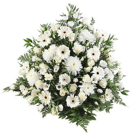 800094_baare-dekorasjon-vifte-hvitt-krans-roser-begravelse-blomsteroslo-blomster-levering-bestille-blomster-sorgbinderi-begravelsesbyraa-baarebukett.jpg;w;450;h